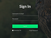 UI Challange - Sign in page