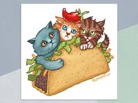 Kitten Taco
