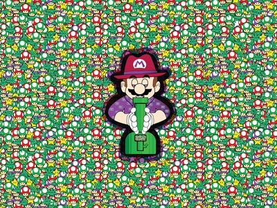 The Real Mario Party
