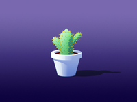 Spiky lil cactus