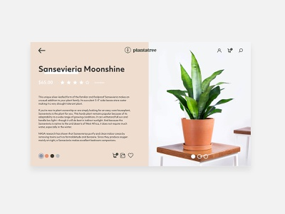 Plantatree E-Commerce Website uidesign userinterface ui plants photoshop modern mockup design mockup fresh design clean app adobexd