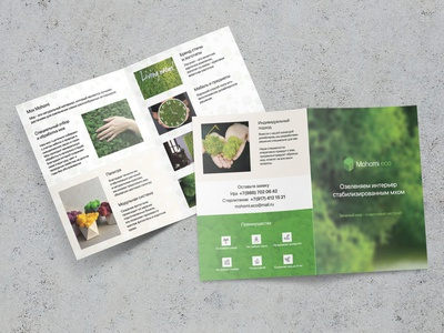 A5 Leaflet for moss producing company