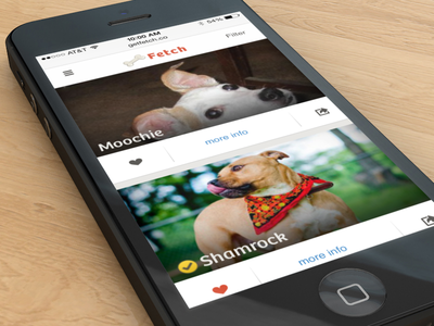 Fetch mobile responsive startup ui ux pets dogs clean