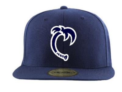 Baseball Central alt lid sport design lid hat logo baseball