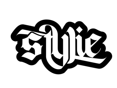 stylie logo type reggae band logo type logo design typography