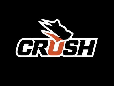 CRUSH sports design logo bear team baseball