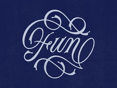 Fun script lettering vintage logo vintage copperplate flourish logo typography logo typeface typography logotype logo design logo lettering illustration graphic  design design custom typography custom type calligraphy