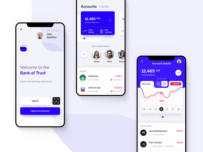 Banking UI login expenses ui ios inspiration mobile app chart finance app financial app account bank app bank banking app app design app banking finance