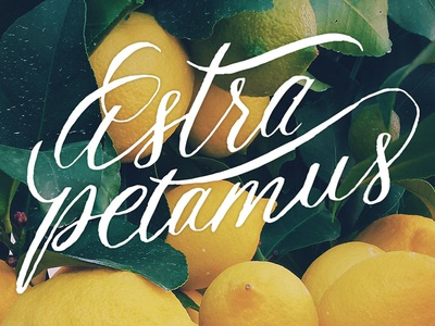 Astra Petamus logo script handlettering wordmark calligraphy lettering logo