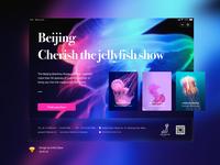 Octopus show,iPad Design exercises