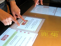 Multi-touch Table Interface