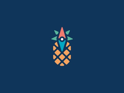 Pineapple Compass Icon