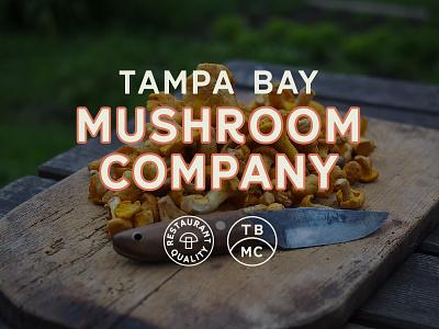 Tampa Bay Mushroom Co Branding mushroom brand logo branding tampabay