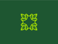 M+Leaves
