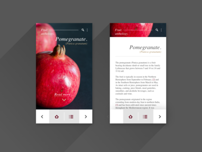 UI Exercise - Fruit Anthology Pomegranate - mobile