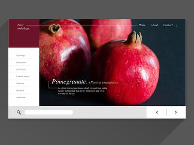 UI Exercise - Fruit Anthology Pomegranate - web adobexd web design web ux ui flat design