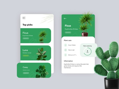 Plant App - Exploration plant illustration concept design dribbble interaction design uxdesign uidesign ui app design figmadesign figma adobe xd ui design
