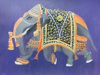 Royal Indian elephant