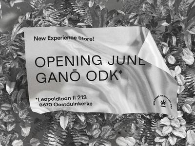 Ganō — ODK