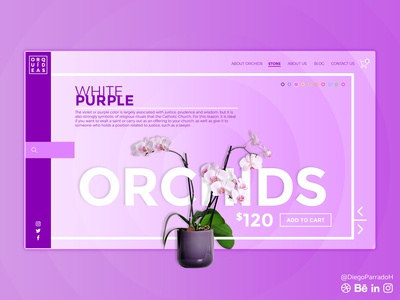 Orquids Shop UI UX AI
