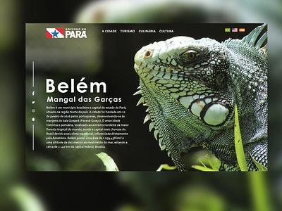 Mangal das Garças frontend front-end design design web webdesign cleison carlos cleison norte brasil brazil animal layout design art front-end pará