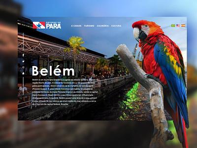 Belém - Pará | Brazil illustration design web design front-end design webdesign brazil