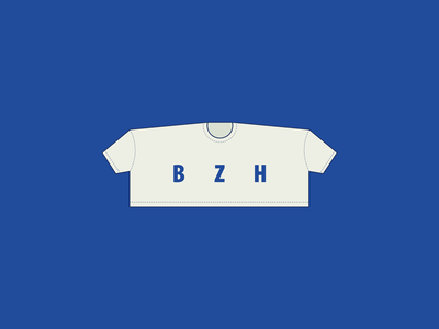 Responsive T-shirt - Landscape bzh joke fun web wear tee-shirt