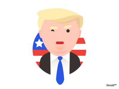 Donald president man character design character illustration