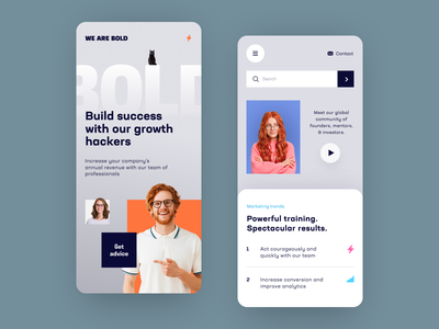 We Are Bold Mobile application startup interface design ux halo lab ui