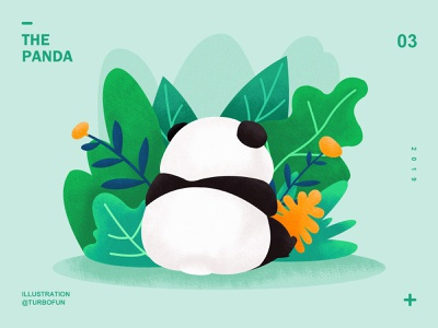 panda animal illustration