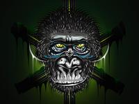 Old Gorilla