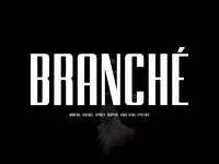 Branche - Sans Display Font