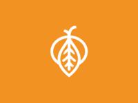 Mandarina Logo
