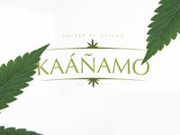 Kannamo