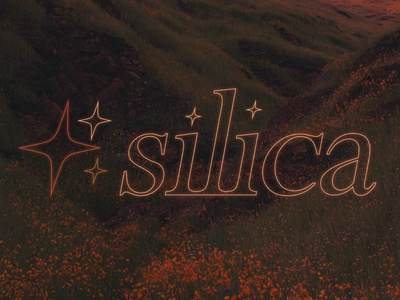 silica type typography design graphic  design fashion branding logo