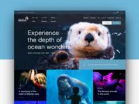 Vancouver Aquarium: Platform Redesign
