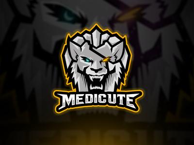 ansardesigner, mascot, esports, logo design