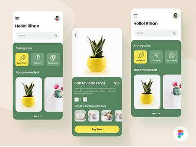 Plant shop App Design UI (Figma) website illustration logo ui design