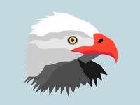 Eagle Rough Illo