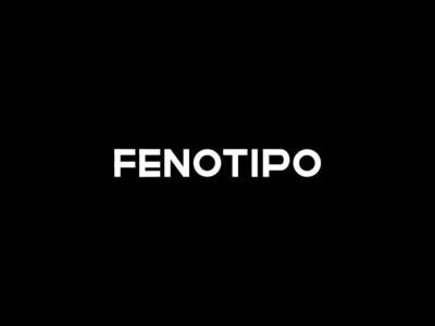 Fenotipo Studio
