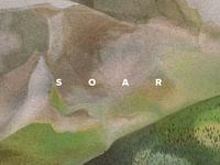 Soar (detail)