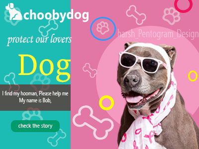 Protect our Dogs interfaces webdesign uiux design animal dog photoshop doglovers