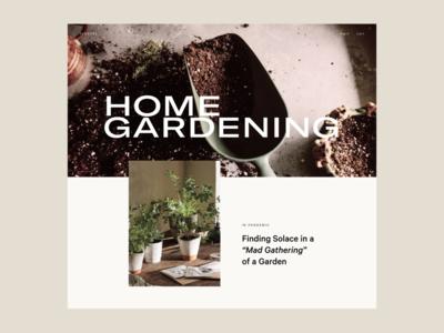 Gardening — 01 ecommerce interface website web ui typography design
