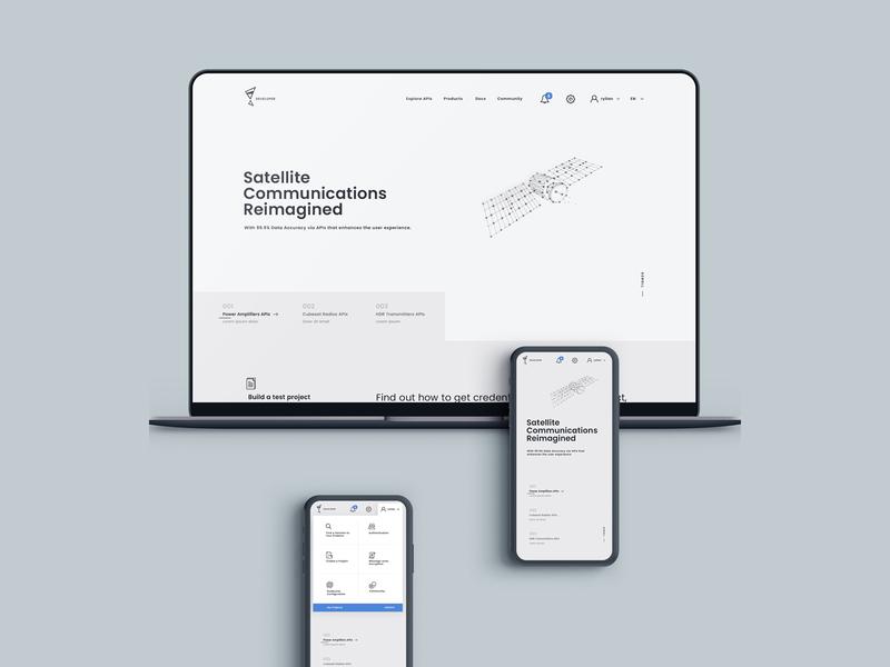api management responsive light api flat illustration minimal app typography web  design interaction ux ui concept design
