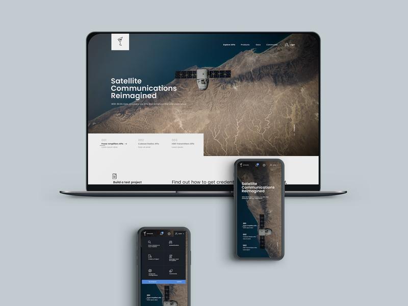 api management v2 responsive api web flat minimal typography web  design interaction ux ui concept design