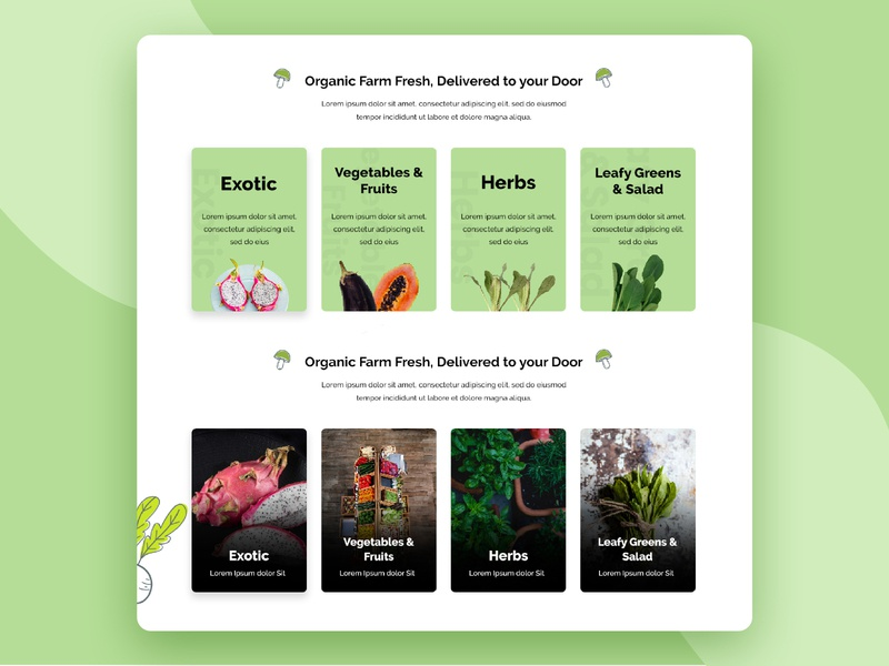 Organic Farm - Categories crop food exotic herbs content vector homepage landing page ux illustration typography web ui design