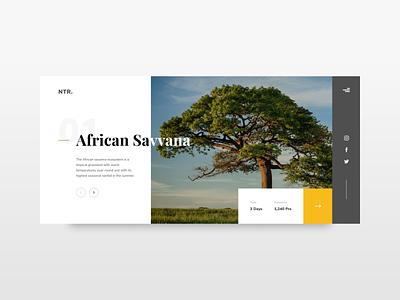 #Exploration   Travelling Hero Page minimal typography website design ux ui