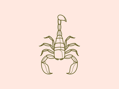 Scorpio Season astrology scorpion scorpio logo design adobe illustrator illustration