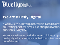 New Bluefly Digital Site