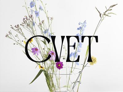 CVET branding simple design logodesign logo design minimalism minimalistic